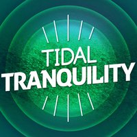 Tidal Tranquility — Beach Waves Specialists