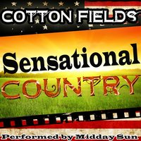 Cotton Fields: Sensational Country — Midday Sun