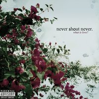 What Is Love? — Never Shout Never