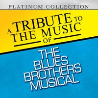 A Tribute to the Music of the Blues Brothers Musical — Platinum Collection Band