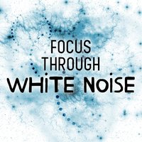 Focus Through White Noise — White Noise 2015