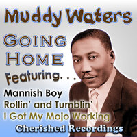Going Home — Muddy Waters