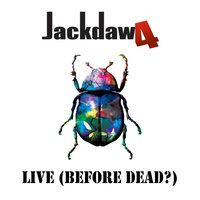 Live (Before Dead?) — Jackdaw4