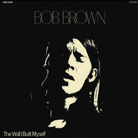 The Wall I Built Myself — Bob Brown