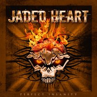 Perfect Insanity — Jaded Heart