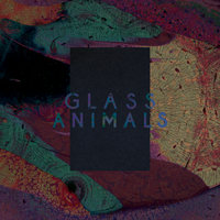 Black Mambo / Exxus — Glass Animals