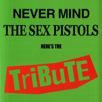 Never Mind The Sex Pistols - Here's The Tribute — Various Artists - Radical Records