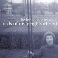 Birds Of My Neighborhood — The Innocence Mission