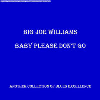 Baby Please Don't Go — Big Joe Williams