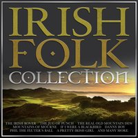 Irish Folk Collection - 40 Tracks for St Patrick's Day — сборник