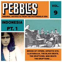 Pebbles Vol. 9, Indonesia Pt. 1, Originals Artifacts from the Psychedelic Era — сборник