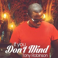 If You Don't Mind — Tony Robinson, Dj Breezy
