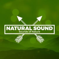 Natural Sound Sounds of Nature — Sounds of Nature Relaxation