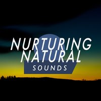 Nurturing Natural Sounds — Sounds Of Nature Relaxation, Sleep Music with Nature Sounds Relaxation, Sleep Songs with Nature Sounds, Sounds of Nature Relaxation|Sleep Music with Nature Sounds Relaxation|Sleep Songs with Nature Sounds