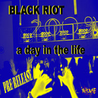 A Day In The Life-2009 Mixes-WMC Pre-Release — Johan Brunkvist, Black Riot