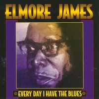 Everyday I Have The Blues — Elmore James