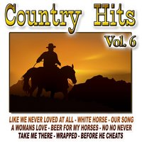 Country Hits Vol.6 — The Cowboy Band