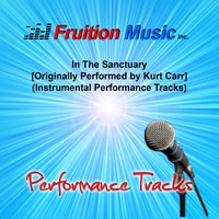 In the Sanctuary — Fruition Music Inc.