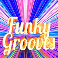 Funky Grooves — Funky Grooves