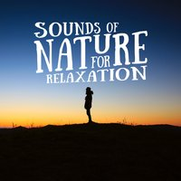 Sounds of Nature for Relaxation — Sounds of Nature for Deep Sleep and Relaxation