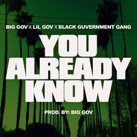 You Already Know (feat. Lil Gov & Black Guvernment Gang) — Big Gov, Black Guvernment Gang, Lil Gov