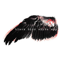 Black Bird White Sky — Black Bird White Sky