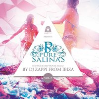 Pure Salinas, Vol. 7 (Compiled by DJ Zappi) — DJ Zappi