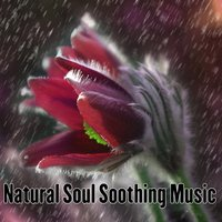Natural Soul Soothing Music — Relaxing Mindfulness Meditation Relaxation Maestro, Relaxing Music Therapy, Relaxing Rain Sounds, Relaxing Meditation Songs Divine, Relaxing Music Therapy, Relaxing Rain Sounds, Relaxing Meditation Songs Divine, Relaxing Mindfulness Meditation Relaxation Maestro