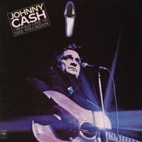 I Would Like to See You Again — Johnny Cash