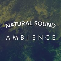 Natural Sound Ambience — Natural Sounds