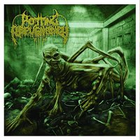 Path of the Diminished — Rotting Repugnancy