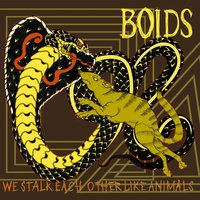 We Stalk Each Other Like Animals — BOIDS