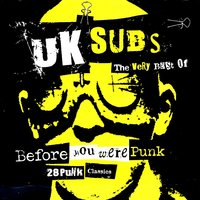 Before You Were Punk: 28 Punk Classics — UK Subs