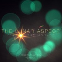 Year of the Monkey: Yoga Your Own Way, Vol. 3.1 — The Lunar Aspect