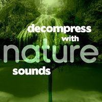 Decompress with Nature Sounds — Relaxing and Healing Sounds of Nature