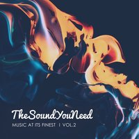 TheSoundYouNeed, Vol. 2 — сборник