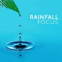 Rainfall Focus — Rainfall