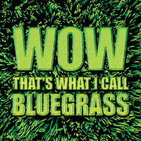 Wow That's What I Call Bluegrass — сборник