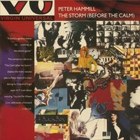 The Storm (Before The Calm) — Peter Hammill