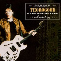 Anthology — George Thorogood & The Destroyers