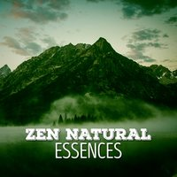 Zen Natural Essences — Nature Sounds for Sleep and Relaxation