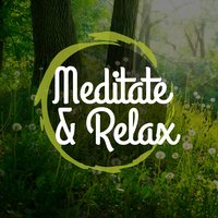 Meditate and Relax — Yoga Tribe, Japanese Relaxation and Meditation, Relaxing Mindfulness Meditation Relaxation Maestro, Japanese Relaxation and Meditation|Relaxing Mindfulness Meditation Relaxation Maestro|Yoga Tribe