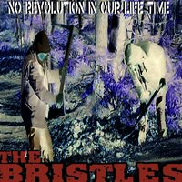 No Revolution in Our Life Time — The Bristles