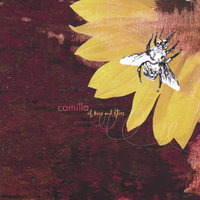 Of Bees and Flies — Camilla