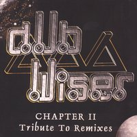 Chapter ii - tribute to remixes — Dub Wiser