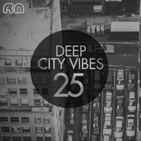 Deep City Vibes, Vol. 25 — сборник