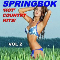 Springbok Hot Country Hits. Vol, 2 — Springbok Country Band
