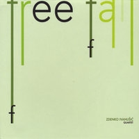 Free Fall — Zdenko Ivanusic