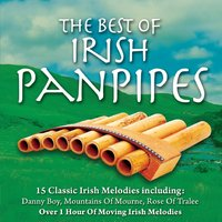 Irish Panpipes — Session Musicians