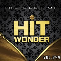 Hit Wonder: The Best of, Vol. 244 — сборник